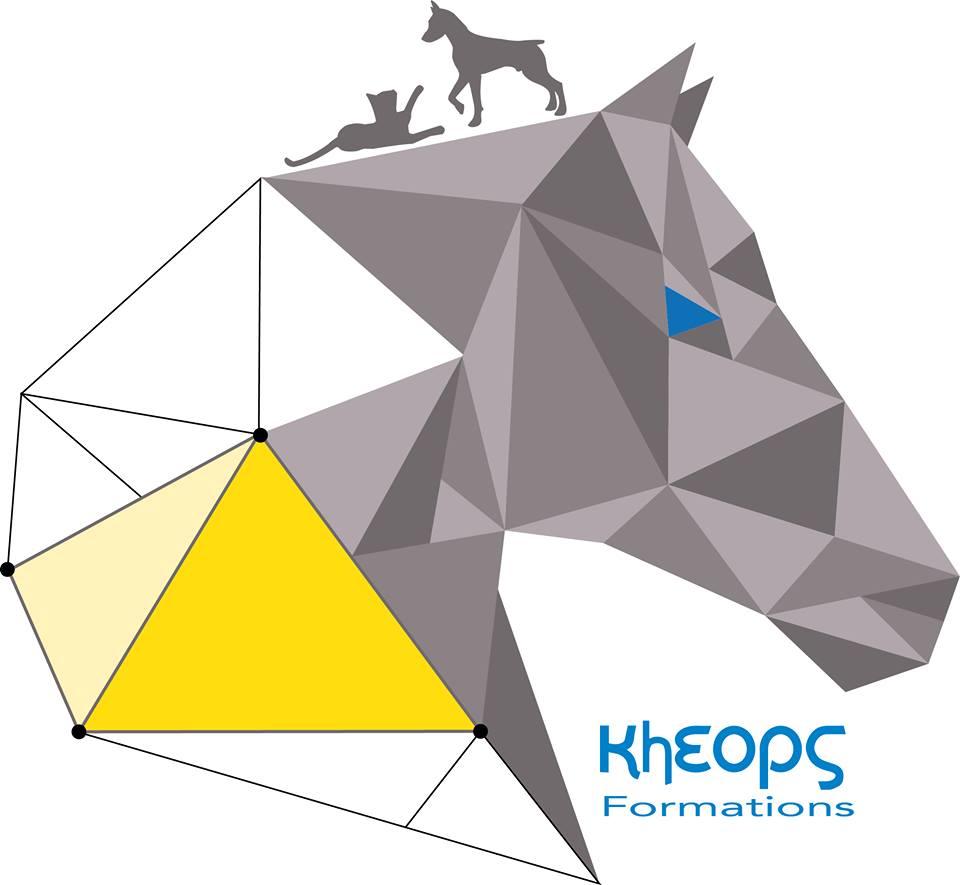 Kinésiologie animale